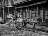 1903 - Milk cart