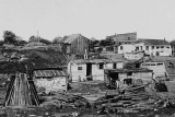 1894 - Shacks on 5th Avenue and 101st Street