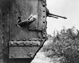 Carrier pigeon released from a tank
