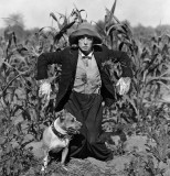 1920 - Buster Keaton in The Scarecrow