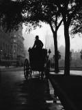 c. 1900 - 5th Avenue