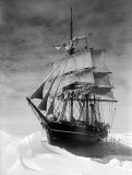 The Terra Nova held up in ice