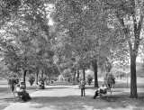 1900 - Lincoln Park
