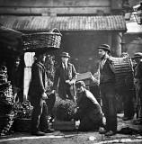 1897 - Nursery men