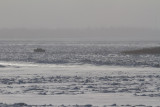 Truck driving across the Moose River 2013 December 13th