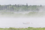 2014 June 24th taxi boat on a foggy morning