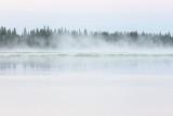 Fog drifting on the Moose River before sunrise.