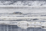 Greg MacDonald drives his taxi boat on the Moose River December 5 2016