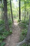 Trail Leading In To Pedestal Rocks King's Bluff