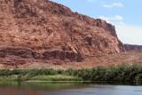 1769 West USA road trip - IMG_8930 DxO Pbase.jpg