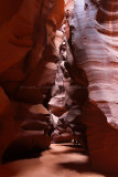 2739 West USA road trip - IMG_9597 DxO Pbase.jpg