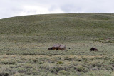 6352 West USA road trip - MK3_3769_DxO Pbase.jpg