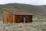 6644 West USA road trip - MK3_3931_DxO Pbase.jpg