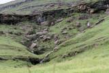 1229 Two weeks in South Africa - IMG_3633 DxO Pbase.jpg