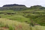 1232 Two weeks in South Africa - IMG_3636 DxO Pbase.jpg