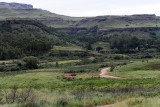 1237 Two weeks in South Africa - IMG_3641 DxO Pbase.jpg