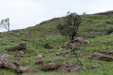 1238 Two weeks in South Africa - IMG_3643 DxO Pbase.jpg