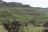 1239 Two weeks in South Africa - IMG_3644 DxO Pbase.jpg