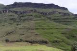 1240 Two weeks in South Africa - IMG_3645 DxO Pbase.jpg