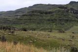 1245 Two weeks in South Africa - IMG_3650 DxO Pbase.jpg