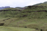 1258 Two weeks in South Africa - IMG_3663 DxO Pbase.jpg