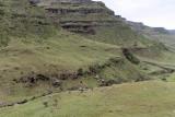 1263 Two weeks in South Africa - IMG_3668 DxO Pbase.jpg