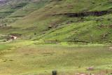 1274 Two weeks in South Africa - IMG_3679 DxO Pbase.jpg