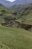 1275 Two weeks in South Africa - IMG_3680 DxO Pbase.jpg
