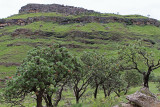 1283 Two weeks in South Africa - IMG_3688 DxO Pbase.jpg