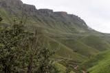 1300 Two weeks in South Africa - IMG_3699 DxO Pbase.jpg