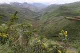 1320 Two weeks in South Africa - IMG_3713 DxO Pbase.jpg