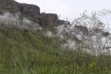 1332 Two weeks in South Africa - IMG_3719 DxO Pbase.jpg
