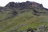 1343 Two weeks in South Africa - IMG_3724 DxO Pbase.jpg