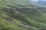 1358 Two weeks in South Africa - MK3_2349 DxO Pbase.jpg