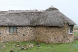 1389 Two weeks in South Africa - IMG_3755 DxO Pbase.jpg