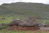 1428 Two weeks in South Africa - IMG_3766 DxO Pbase.jpg
