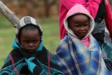 1466 Two weeks in South Africa - MK3_2398 DxO Pbase.jpg
