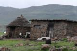 1501 Two weeks in South Africa - MK3_2416 DxO Pbase.jpg