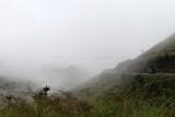 1541 Two weeks in South Africa - IMG_3835 DxO Pbase.jpg