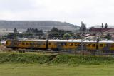 4282 Two weeks in South Africa - IMG_5881_DxO Pbase.jpg