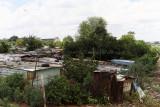 4362 Two weeks in South Africa - IMG_5910_DxO Pbase.jpg