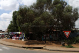4371 Two weeks in South Africa - IMG_5919_DxO Pbase.jpg