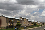 4373 Two weeks in South Africa - IMG_5921_DxO Pbase.jpg