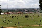 4381 Two weeks in South Africa - IMG_5929_DxO Pbase.jpg