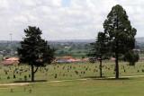 4383 Two weeks in South Africa - IMG_5931_DxO Pbase.jpg