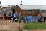 4405 Two weeks in South Africa - IMG_5955_DxO Pbase.jpg