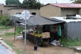 4416 Two weeks in South Africa - IMG_5966_DxO Pbase.jpg