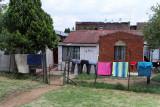 4424 Two weeks in South Africa - IMG_5974_DxO Pbase.jpg