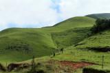 4253 Two weeks in South Africa - IMG_5850_DxO Pbase.jpg