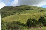4260 Two weeks in South Africa - IMG_5858_DxO Pbase.jpg
